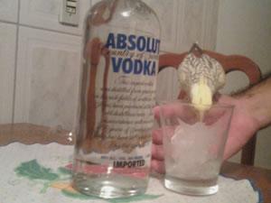 Calopsita bebendo água (não é vodka)