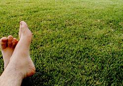 Pé na grama
